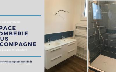 Rénovation d'une salle d'eau avec WC et meuble vasque